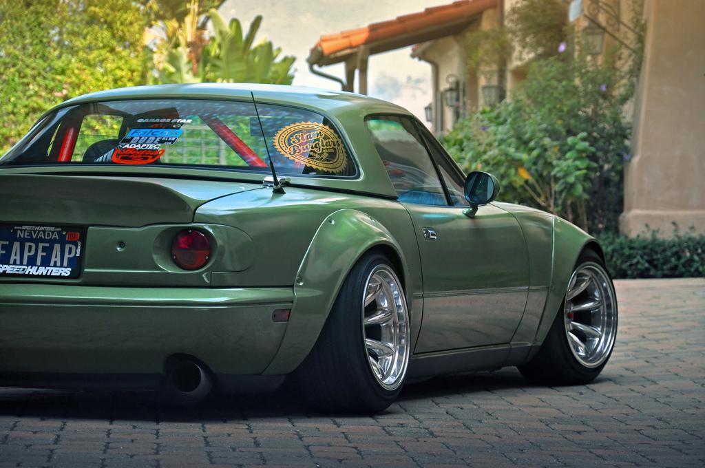 Roadster Startinggrid