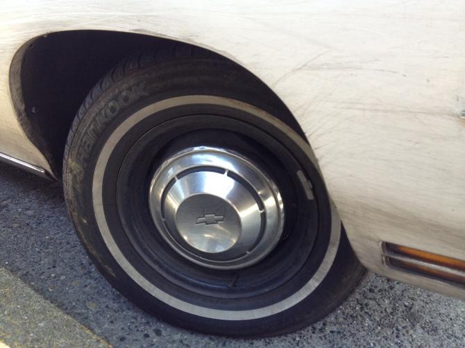 Dog dish hubcaps