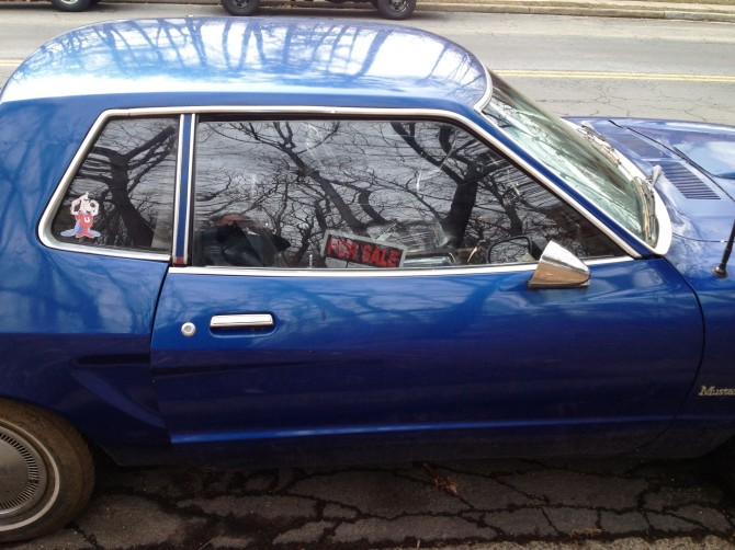 Mustang II_pic 6